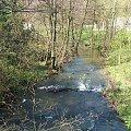 Rzeka Bystra w Wierzchoniowie #Wierzchoniów #Bystra #rzeka