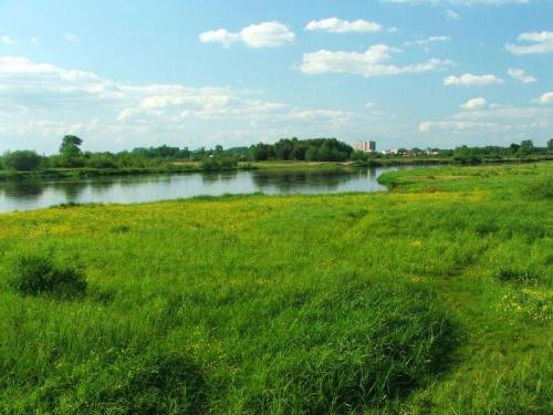 Za Wieprzem widać Dęblin #Dęblin #rzeka #Wieprz #łąka