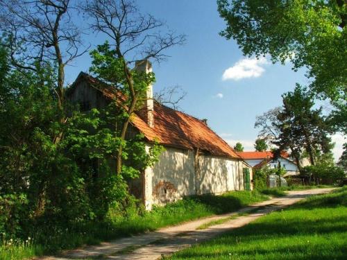 Majątek Borowina #wieś
