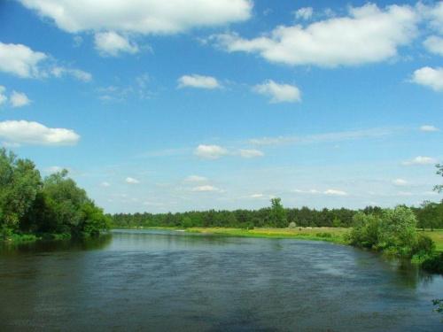 Nad Wieprzem koło Niebrzegowa #rzeka #Wieprz #Niebrzegów