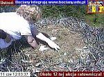 http://images22.fotosik.pl/147/5e36d9fb67623f02m.jpg