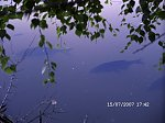 http://images22.fotosik.pl/172/369eb985ce1cf522m.jpg