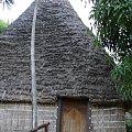 spacer przez Centrum Kultury Polinezyjskiej- zwiedzanie kolejnej wioski #kultura #przeszłość #PoZachodzieSłońca #roślinność #dom #Hawaje