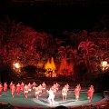 Centrum Kultury Polinezyjskiej - występy #kultura #egzotyka #taniec #rośliny
