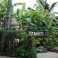 Centrum Kultury Polinezyjskiej - wioska Tahiti #kultura #egzotyka #taniec #rośliny