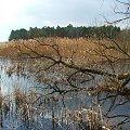 Jezioro Piskory #Piskory #jezioro