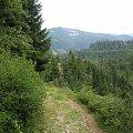 szlak Biały Krzyż (przeł. Salmopolska) - Szczyrk Solisko #góry #Beskidy #BeskidŚląski #Szczyrk